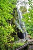 Cachoeira com uma caverna entre um jardim verde Fotografia de Stock Royalty Free