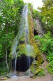 Cachoeira com uma caverna entre um jardim verde Foto de Stock Royalty Free