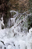 A cachoeira congelada Imagens de Stock