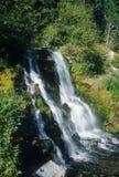 Cachoeira da capa da montagem Fotos de Stock Royalty Free