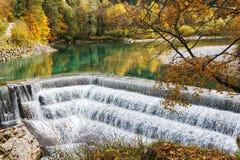 Cachoeira da cascata em uma floresta colorida do outono Fotos de Stock Royalty Free