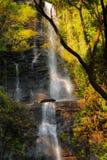 Cachoeira da etapa Imagens de Stock Royalty Free