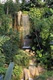Cachoeira da floresta úmida Fotos de Stock