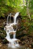 Cachoeira da floresta Imagens de Stock