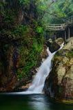 Cachoeira da floresta foto de stock royalty free