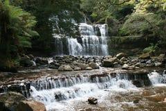 Cachoeira da floresta húmida Fotografia de Stock Royalty Free
