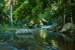 Cachoeira da floresta húmida Imagens de Stock Royalty Free