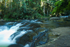 Cachoeira da floresta húmida Fotos de Stock