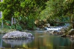 Cachoeira da floresta húmida Fotos de Stock Royalty Free