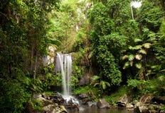 Cachoeira da floresta húmida Imagem de Stock Royalty Free