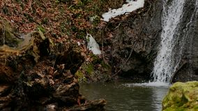 Cachoeira da floresta no inverno filme