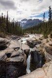 Cachoeira da garganta de Mistaya e córrego, parque nacional de Banff Foto de Stock
