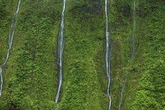 Cachoeira da garganta de Waimea, Kauai Imagens de Stock Royalty Free