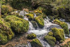 Cachoeira da montanha Geórgia, Cáucaso Fotos de Stock