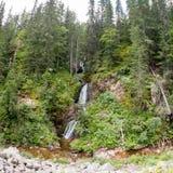 Cachoeira da montanha que flui entre as inclinações íngremes do Rhodope Fotografia de Stock