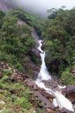 Cachoeira da montanha que flui fora da névoa Imagem de Stock Royalty Free