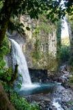 Cachoeira da névoa de México Xico Veracruz a mais forrest foto de stock