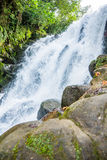 Cachoeira da névoa de México Xico Veracruz a mais forrest fotografia de stock royalty free
