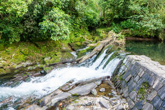 Cachoeira da névoa de México Xico Veracruz a mais forrest foto de stock royalty free