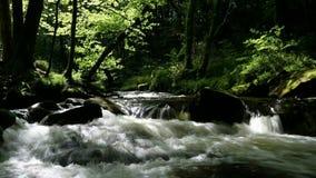 cachoeira da natureza Fotografia de Stock Royalty Free