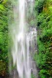 Cachoeira da parede Fotos de Stock Royalty Free
