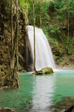 Cachoeira da selva Fotografia de Stock Royalty Free