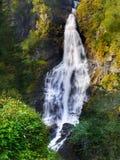 Cachoeira da selva Imagem de Stock Royalty Free