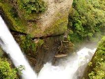 Cachoeira da selva Fotografia de Stock