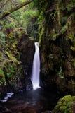 Cachoeira da selva, vert Fotos de Stock