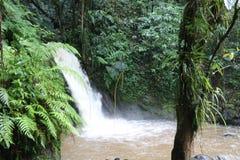 Cachoeira das lagostas em Guadalupe imagem de stock royalty free