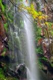 Cachoeira de AugacaÃda Imagem de Stock Royalty Free