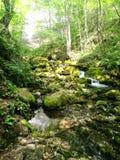 Cachoeira de Bigar Imagens de Stock
