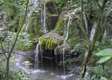 Cachoeira de Bigar na paralela 45 de Caras-Severin em Romênia Foto de Stock