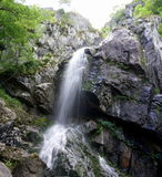 Cachoeira de Boyana Imagem de Stock Royalty Free