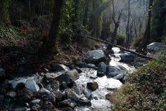 Cachoeira de Caledonia Fotografia de Stock
