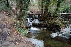 Cachoeira de Caledonia Fotos de Stock Royalty Free