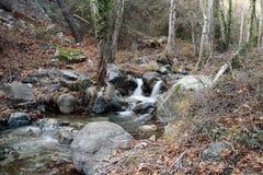 Cachoeira de Caledonia Imagens de Stock