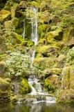 Cachoeira de conexão em cascata Fotos de Stock