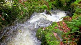 Cachoeira de conexão em cascata da água filme