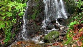 Cachoeira de conexão em cascata da água vídeos de arquivo