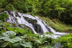Cachoeira de Dokuzak Fotos de Stock
