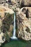 Cachoeira de Ein Gedi Imagem de Stock
