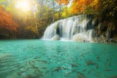Cachoeira de Erawan, cachoeira bonita na floresta úmida, Kanchanabur foto de stock