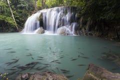 Cachoeira de Erawan em Kanchanaburi Fotografia de Stock Royalty Free