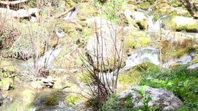 Cachoeira de Fontegreca filme