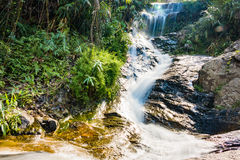 Cachoeira de Huay Kaew, Chiang Mai, Tailândia Fotografia de Stock Royalty Free