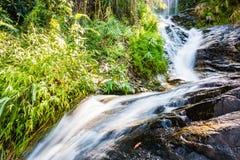 Cachoeira de Huay Kaew, Chiang Mai, Tailândia Imagem de Stock Royalty Free
