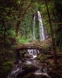 Cachoeira de Jumog Imagem de Stock