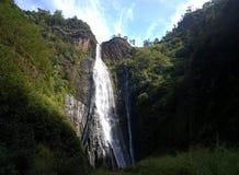 Cachoeira de Jurassic Park em Kauai, HI fotos de stock royalty free