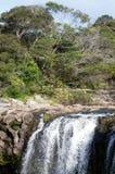 Cachoeira de Kerikeri - Nova Zelândia imagem de stock royalty free